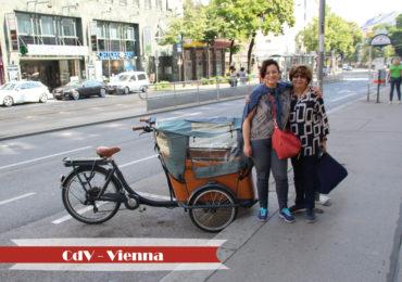 Vienna35