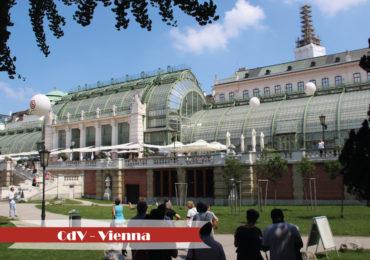 Vienna31