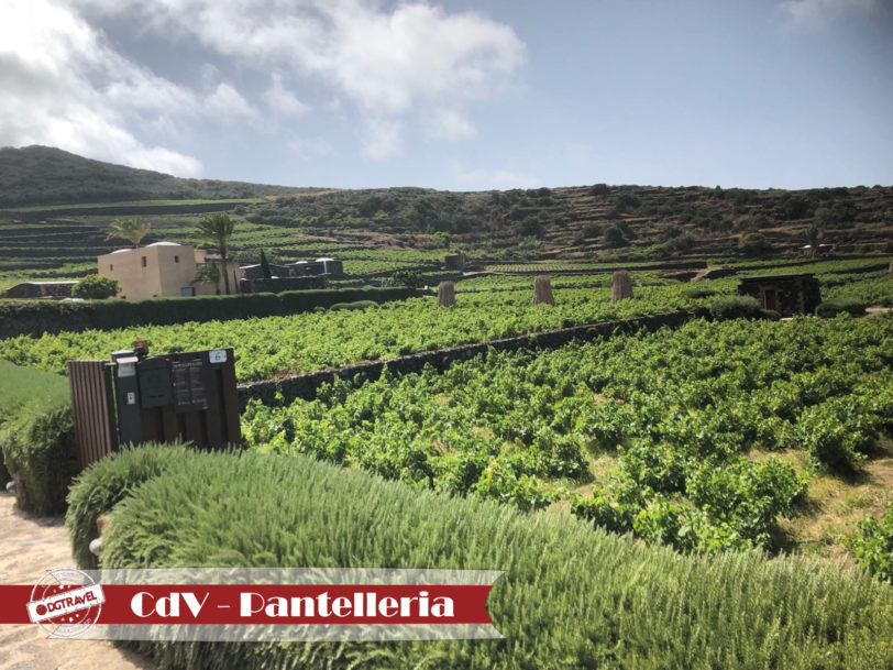 Pantelleria15