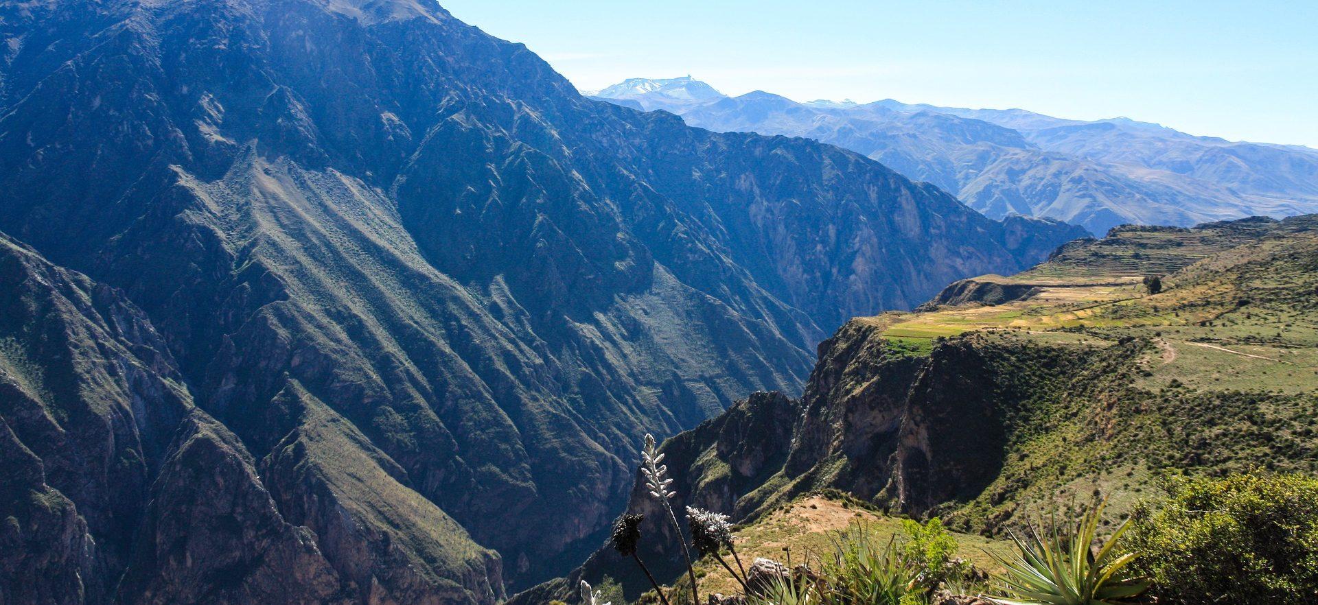 Colca Canyon Perù