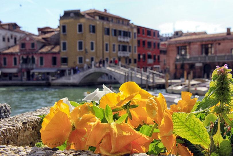 primavera venezia